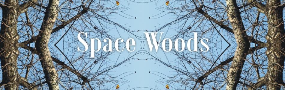 Space_Woods_kafel_D