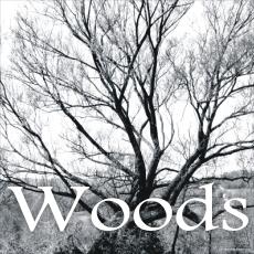 Woods_kafel