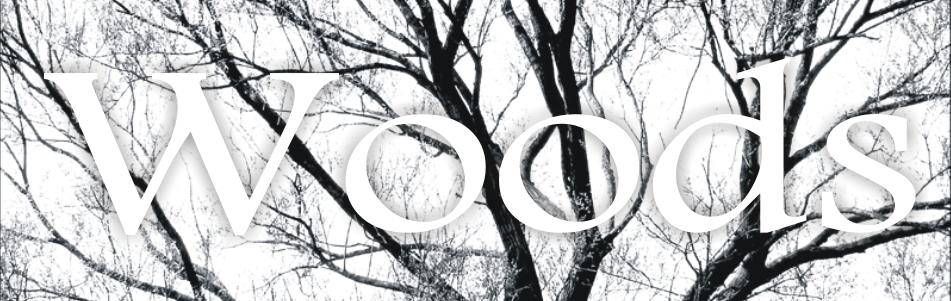 Woods_kafel_D